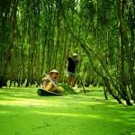 Around Cao Lanh
